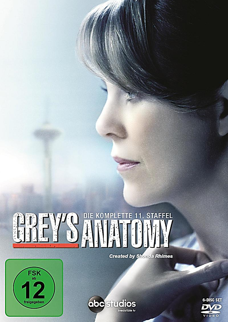 Image of Grey's Anatomy - Die komplette Staffel 11