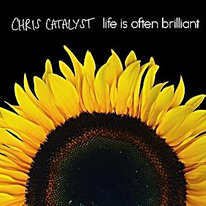 Image of Life Is Often Brilliant