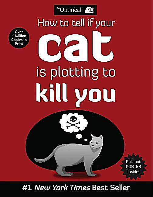 Image of How To Tell If Your Cat Is Plotting To Kill You