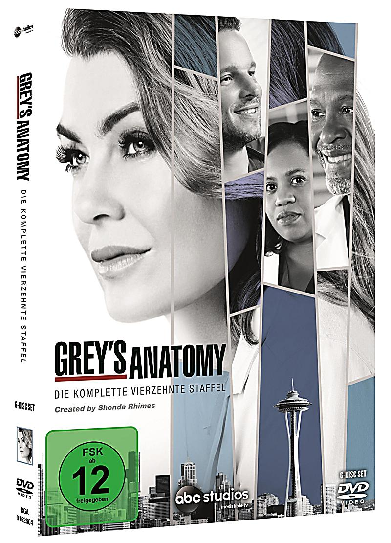 Image of Grey's Anatomy - Die komplette Staffel 14