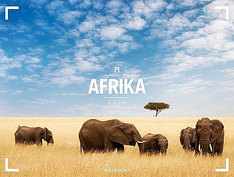 Image of Afrika - Ackermann Gallery 2020