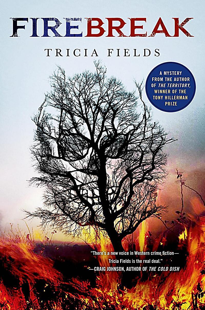 Josie Gray Mysteries: 4 Firebreak