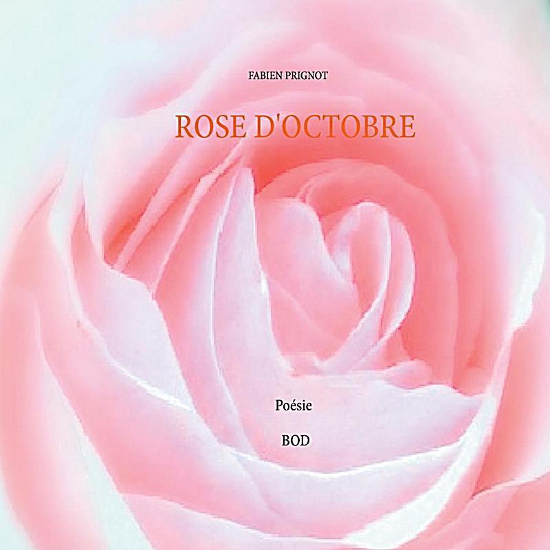 Rose d´octobre
