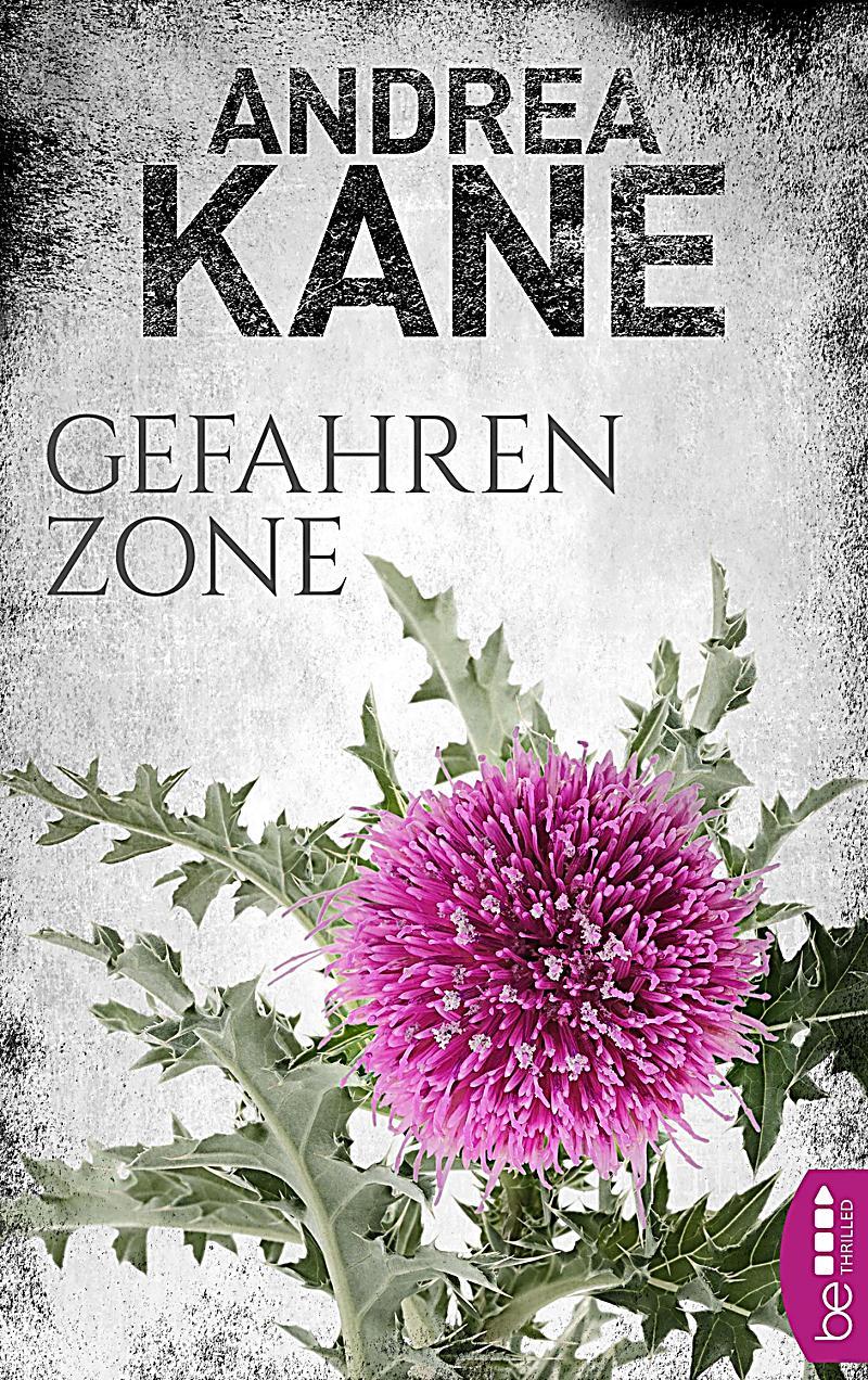 Romantic Suspense der Bestseller-Autorin Andrea Kane: 5 Gefahrenzone