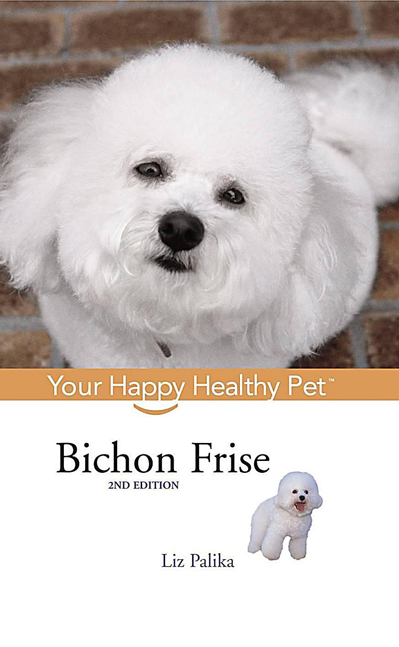 Your Happy Healthy P: 33 Bichon Frise