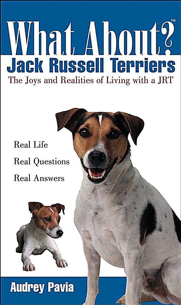 What About Jack Russell Terriers