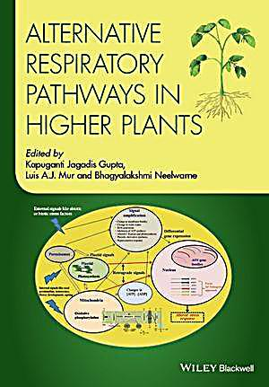 Alternative Respiratory Pathways in Higher Plants