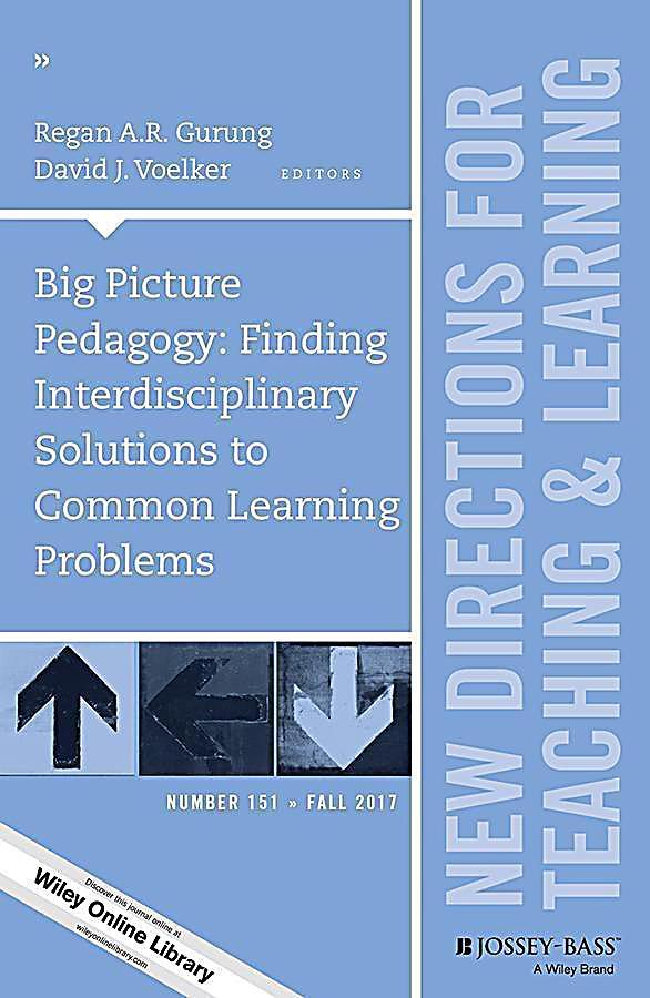 Big Picture Pedagogy