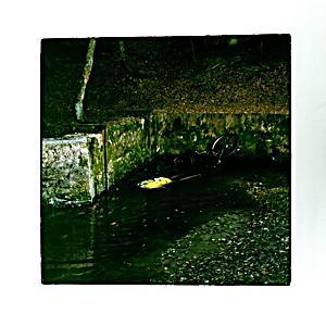 Image of Totem Lp (Vinyl)