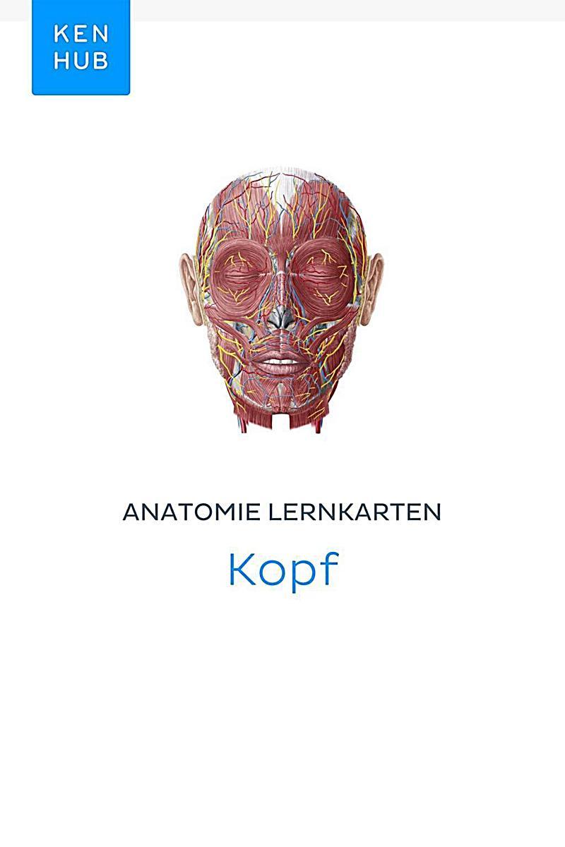 Kenhub Lernkarten: 23 Anatomie Lernkarten: Kopf