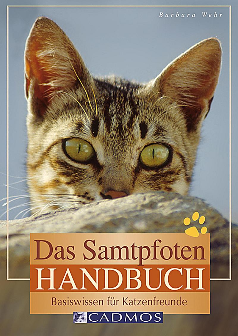 Katzen: Das Samtpfoten-Handbuch