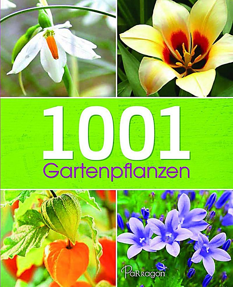 1001 gartenpflanzen buch jetzt bei online bestellen. Black Bedroom Furniture Sets. Home Design Ideas