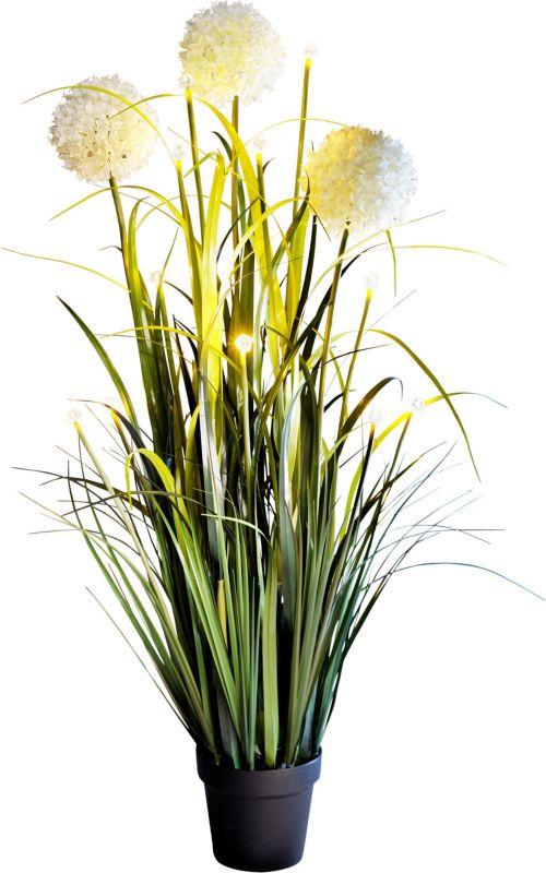 Blumen Deko led blumendeko allium jetzt bei weltbild de bestellen