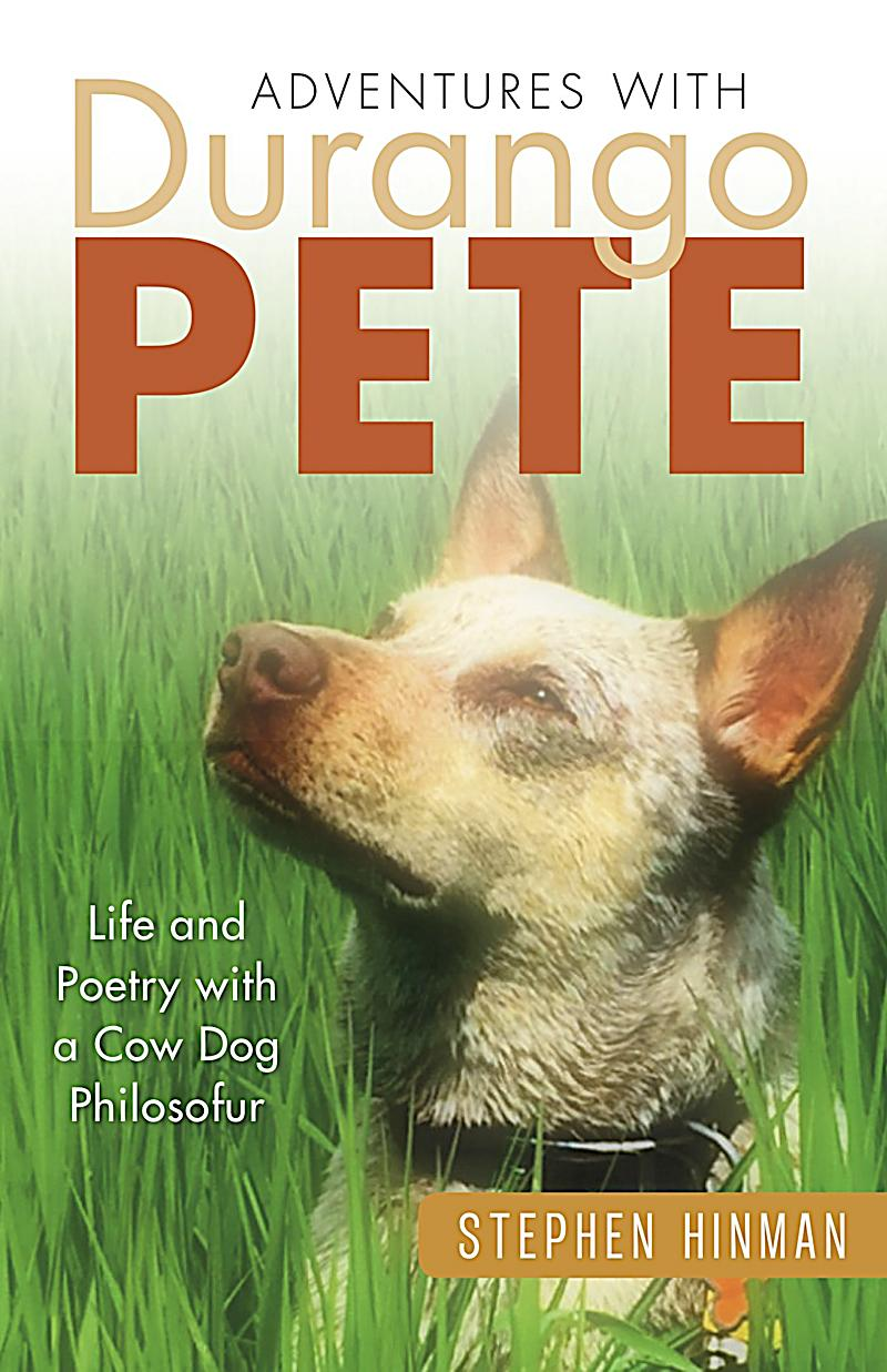 the life of pete Pistol is more than the biography of a ballplayer it's the stuff of classic novels:  the story of a boy transformed by his father's dream -- and the cost of that dream.