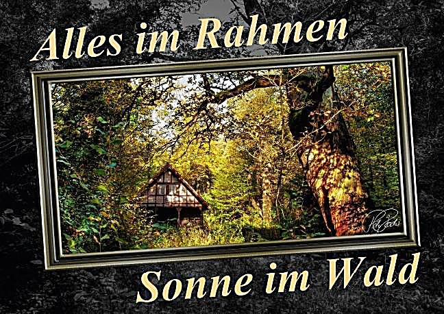 alles im rahmen sonne im wald posterbuch din a3 quer buch. Black Bedroom Furniture Sets. Home Design Ideas