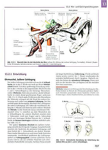 Fein Anatomie Malbuch Seiten Bilder - Ideen färben - blsbooks.com