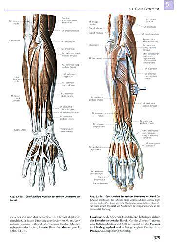Schön Anatomie Malbuch Galerie - Ideen färben - blsbooks.com