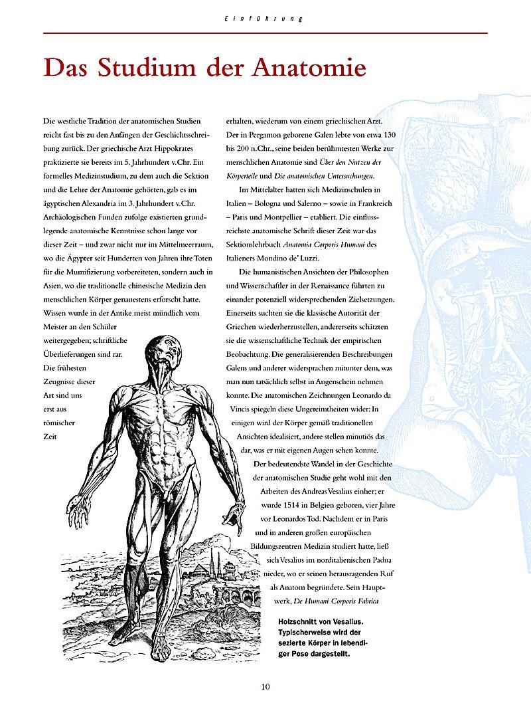 Fein 3d Atlas Der Menschlichen Anatomie Fotos - Anatomie Von ...