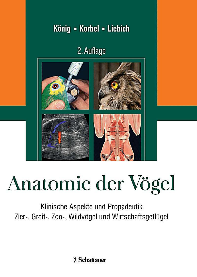 Anatomie der Vögel Buch jetzt portofrei bei Weltbild.at bestellen