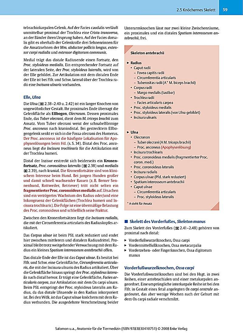 Lernkarten Physiologie Fur Die Physiotherapie Download Image ...
