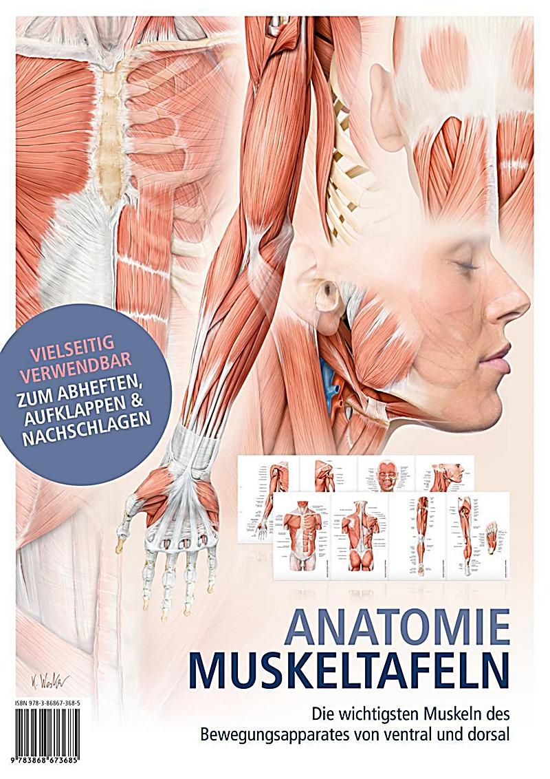 Großzügig Online Wesentliche Der Menschlichen Anatomie Und ...