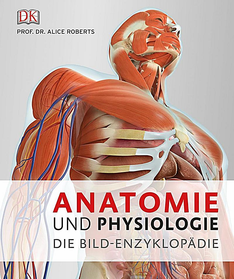 Fein Menschliche Anatomie Martini 7. Ausgabe Pdf Download Galerie ...