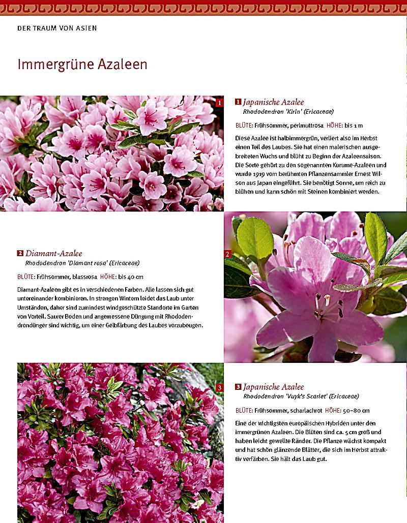 Asiatische Gärten asiatische gärten gestalten buch portofrei bei weltbild at