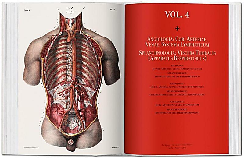 Atlas der menschlichen Anatomie und der Chirurgie The Complete Atlas ...