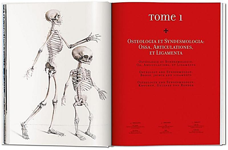 Atlas of human anatomy and surgery