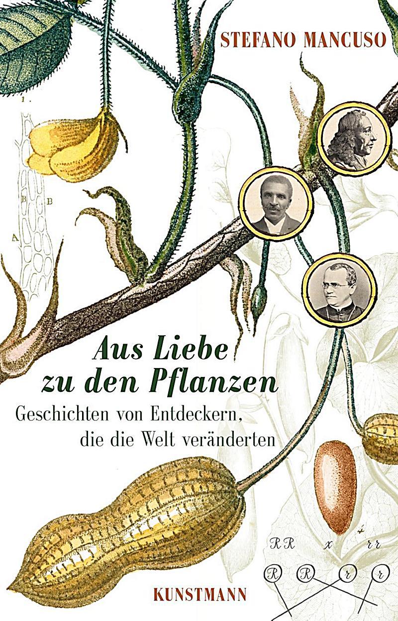 Großzügig Pflanzenanatomie Abbildungen Galerie - Anatomie Ideen ...