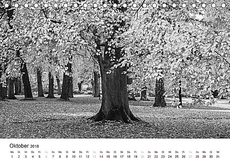 b ume natursch nheiten in schwarz weiss tischkalender 2018 din a5 quer kalender bestellen. Black Bedroom Furniture Sets. Home Design Ideas