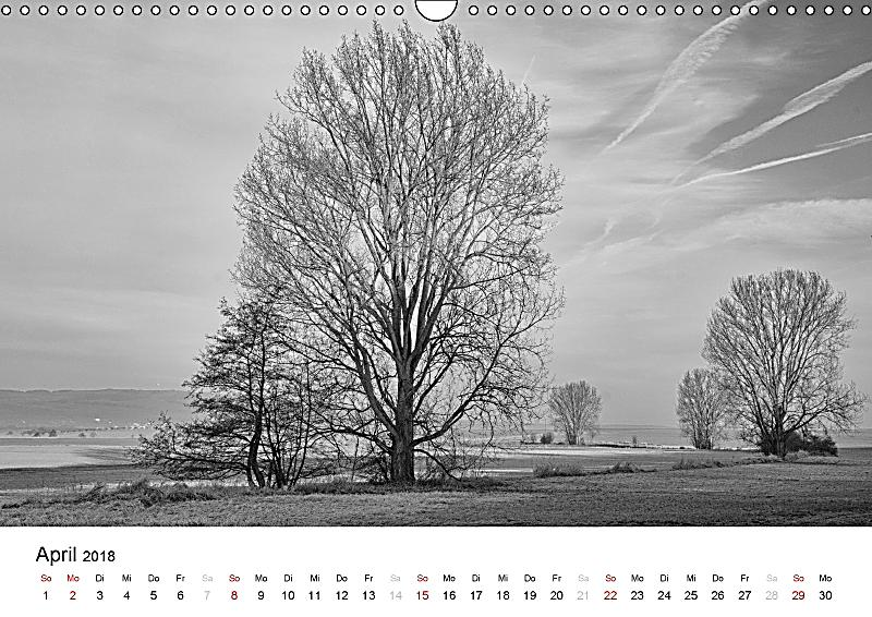 b ume natursch nheiten in schwarz wei wandkalender 2018 din a3 quer kalender bestellen. Black Bedroom Furniture Sets. Home Design Ideas