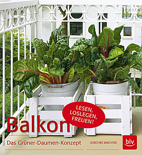 balkon buch von doroth e waechter jetzt bei bestellen. Black Bedroom Furniture Sets. Home Design Ideas
