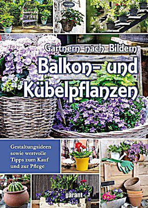 balkon und k belpflanzen buch bei online. Black Bedroom Furniture Sets. Home Design Ideas