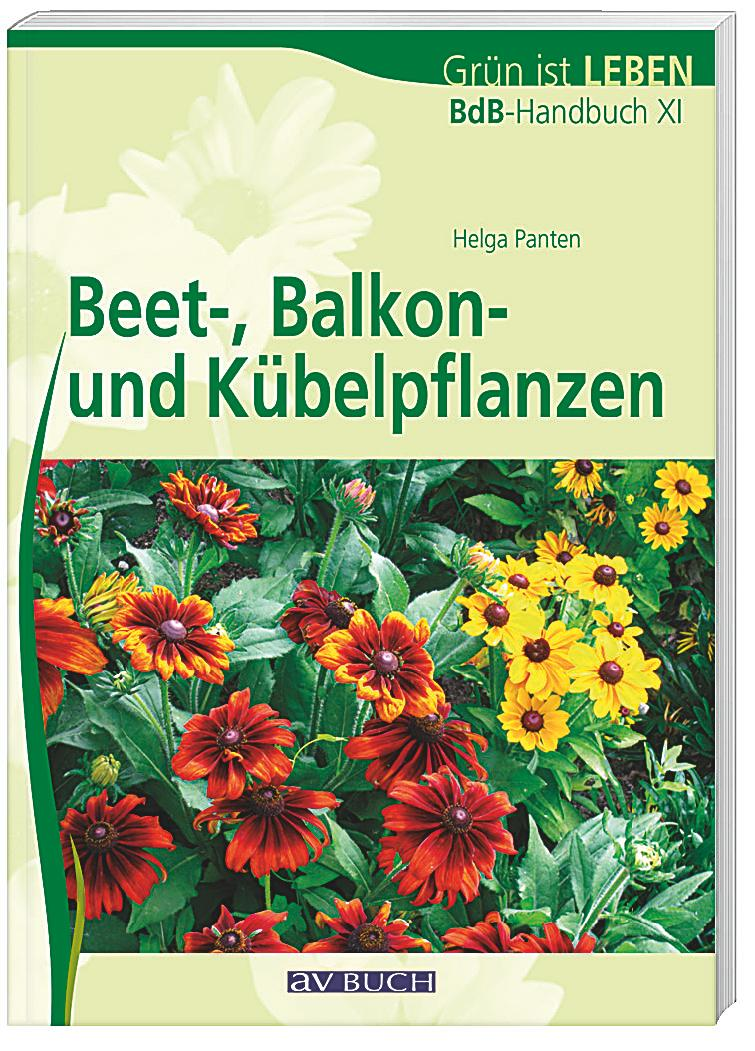 beet balkon und k belpflanzen buch portofrei bei. Black Bedroom Furniture Sets. Home Design Ideas