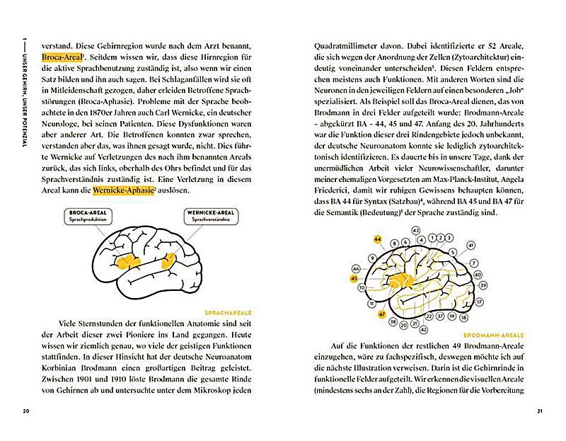 Beweg dich! Und dein Gehirn sagt Danke Buch - Weltbild.de