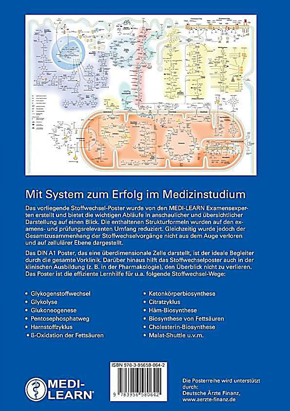 Gruppo pubblico Büchermarkt Medizin Heidelberg | …