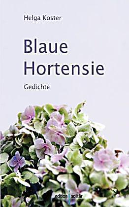 blaue hortensie buch von helga koster portofrei bei. Black Bedroom Furniture Sets. Home Design Ideas