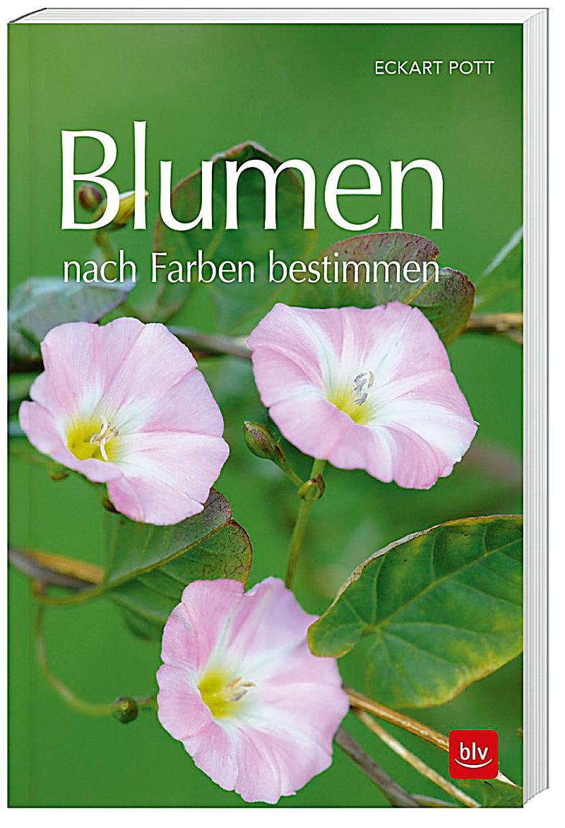 blumen nach farben bestimmen buch portofrei bei. Black Bedroom Furniture Sets. Home Design Ideas