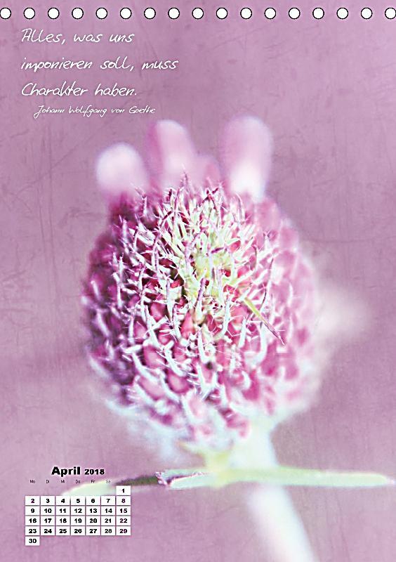 Blumen zitate ch version tischkalender 2018 din a5 hoch - Blumen zitate ...