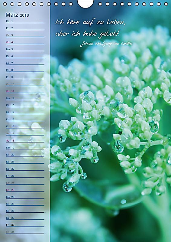 Blumen zitate geburtstagskalender wandkalender 2018 din - Blumen zitate ...