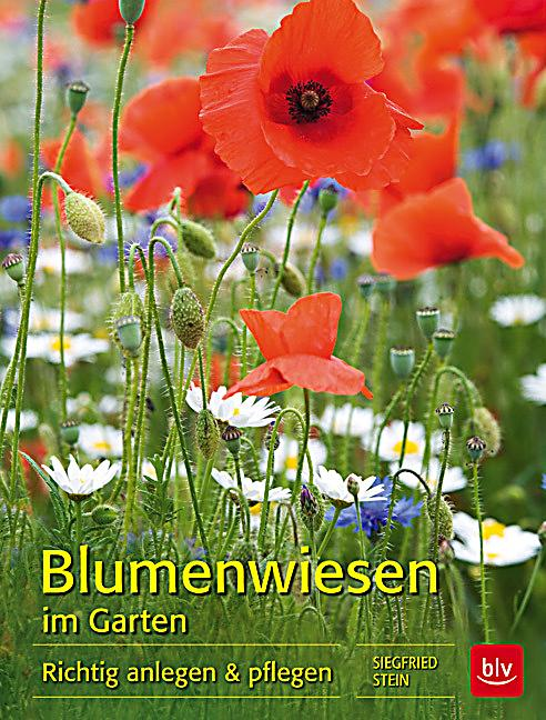 blumenwiesen im garten buch portofrei bei. Black Bedroom Furniture Sets. Home Design Ideas