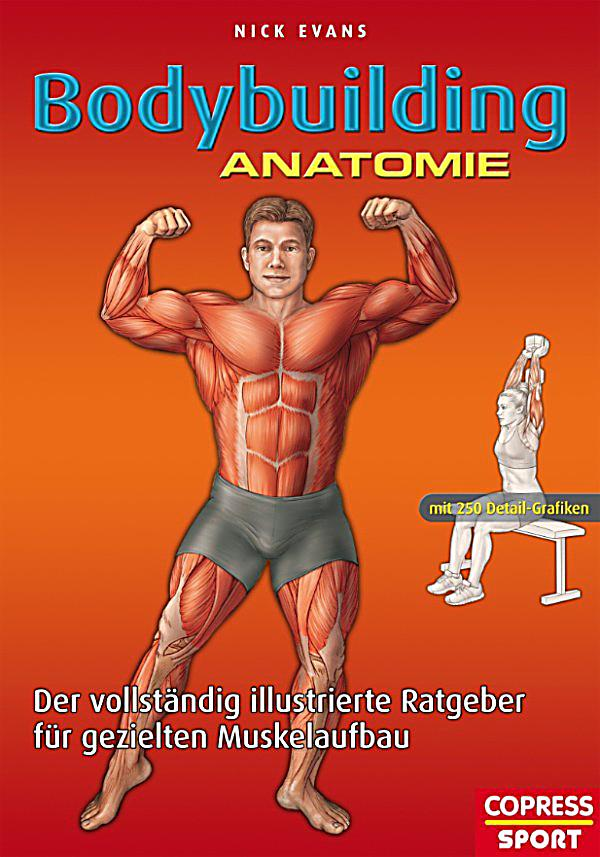 Pilates Anatomie Illustrierter Ratgeber Stabilitat Download Gallery ...