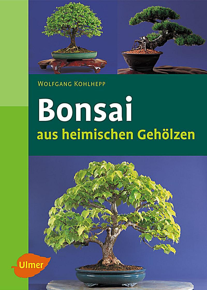 bonsai aus heimischen geh lzen buch portofrei bei. Black Bedroom Furniture Sets. Home Design Ideas