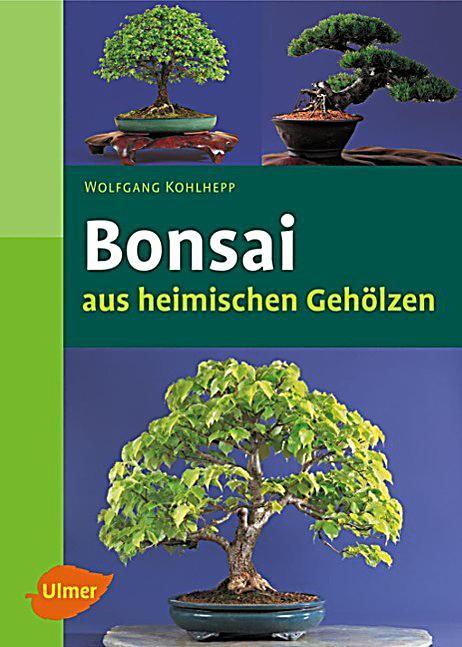 bonsai aus heimischen geh lzen buch bei bestellen. Black Bedroom Furniture Sets. Home Design Ideas