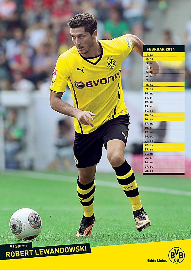 borussia dortmund posterkalender 2014 kalender bei. Black Bedroom Furniture Sets. Home Design Ideas