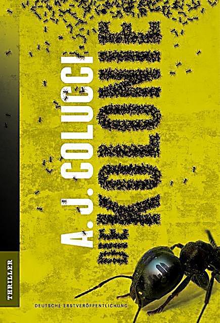 Bildergebnis für die kolonie colucci