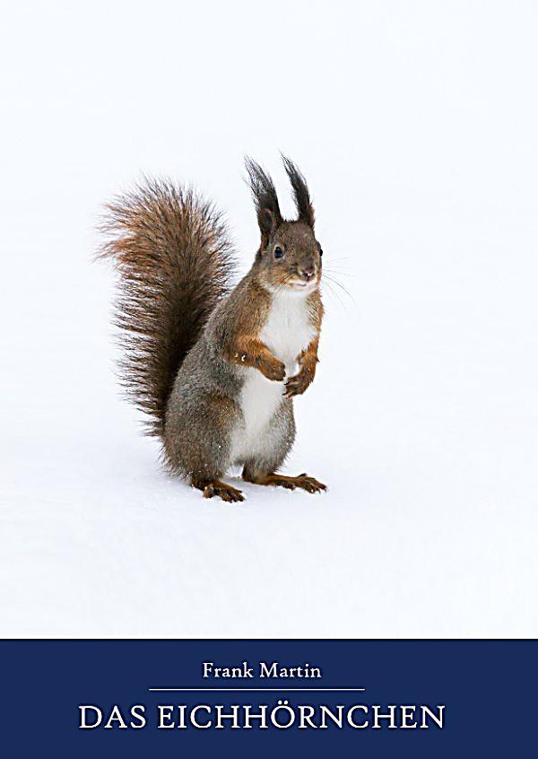 Das Eichhörnchen Arbeitsblatt : Das eichhörnchen ebook jetzt bei weltbild als download