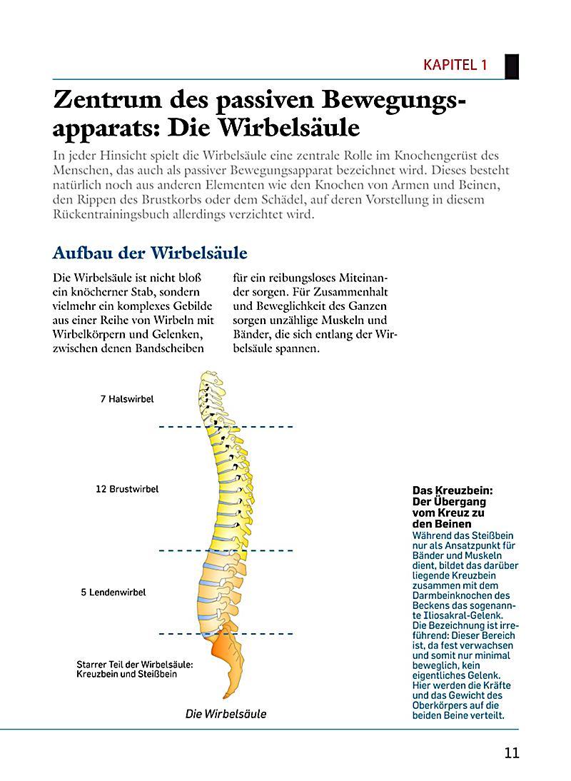 Ausgezeichnet 5. Lendenwirbel Zeitgenössisch - Menschliche Anatomie ...