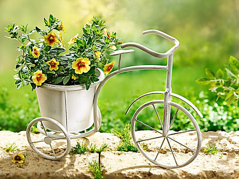 deko fahrrad mit pflanzkorb jetzt bei bestellen. Black Bedroom Furniture Sets. Home Design Ideas